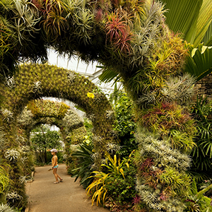 Daniel Stowe Botanical Garden Arches