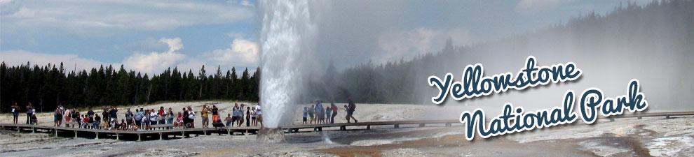 Yellowstone NP Group Tours